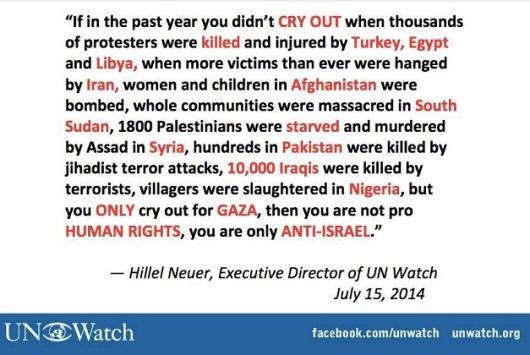 Israel - Hillel Neuer - UN Watch (resized)