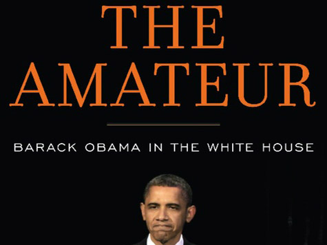 the-amateur